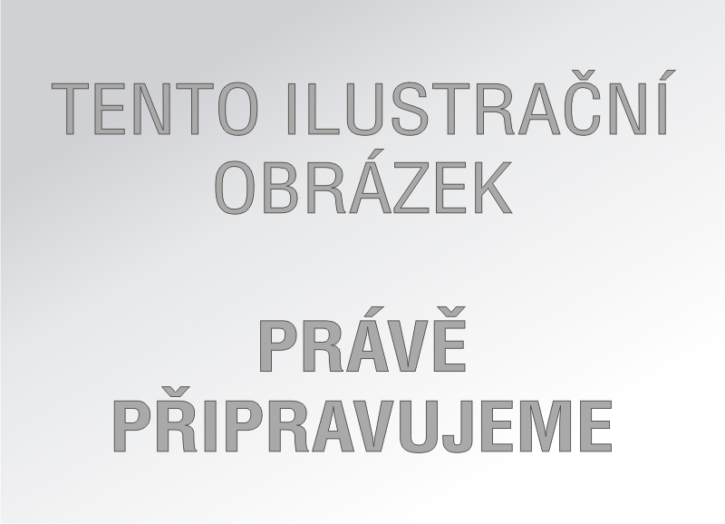 Poznámkový notes linkovaný Alfons Mucha 2018 motiv III, 13x21 - Kalendárium