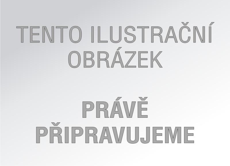 Tříměsíční nástěnný kalendář Standard  s českými jmény 2018 - modrý