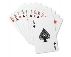 Hrací karty ALTA v plastovém pouzdře - červená