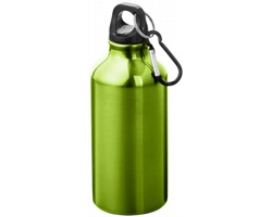 Kovová nápojová láhev CLIMB s karabinou, 350ml - světle zelená