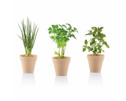 Bylinková zahrádka MAUD se 3 různými bylinkami - zelená