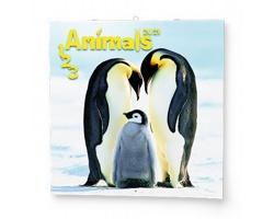 Nástěnný kalendář 1-2-3 Animals 2021