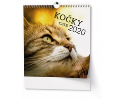 VÝPRODEJ: Nástěnný kalendář Kočky 2019 - IDEÁL