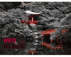 Nástěnný kalendář Red in Black 2021