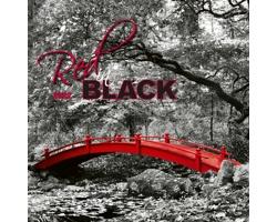 Nástěnný kalendář Red in black 2022
