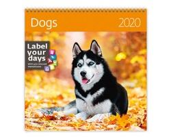 Nástěnný kalendář Dogs 2020 - se samolepkami