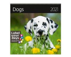 Nástěnný kalendář Dogs 2021