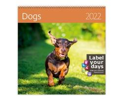 Nástěnný kalendář Dogs 2022