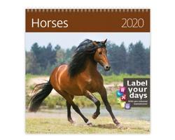 Nástěnný kalendář Horses 2020 - se samolepkami
