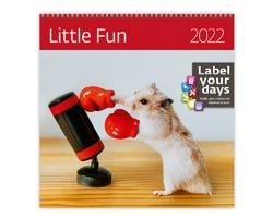 Nástěnný kalendář Little Fun 2022