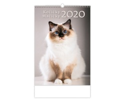 Nástěnný kalendář Kočičky / Mačičky 2020