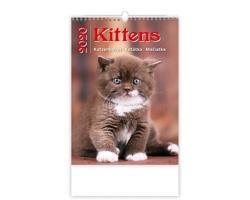Nástěnný kalendář Kittens / Katzenbabys / Kočičky / Mačičky 2020