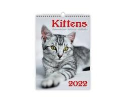 Nástěnný kalendář Kittens/Katzenbabys/Koťátka/Mačičky 2022