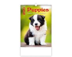 Nástěnný kalendář Puppies / Welpen / Štěňátka / Šteniatka 2020