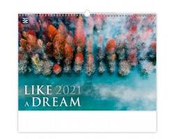 Nástěnný kalendář Like a Dream 2021
