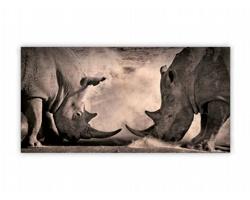 Luxusní dřevěný nástěnný obraz Rhinos
