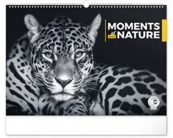 Nástěnný kalendář Momenty v přírodě 2020