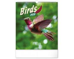 Nástěnný kalendář Ptáci 2020