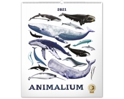 Nástěnný kalendář Animalium - Lucie Jenčíková 2021