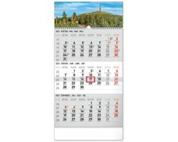 Tříměsíční nástěnný kalendář Krajina 2021 s českými jmény - šedá