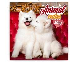 Nástěnný kalendář Mláďata 2022 - poznámkový - východoevropský