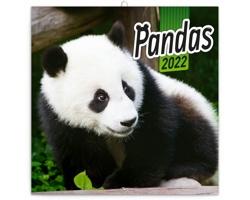 Nástěnný kalendář Pandy 2022 - poznámkový - západoevropský