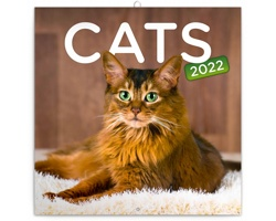 Nástěnný kalendář Kočky 2022 - poznámkový - západoevropský