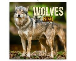 Nástěnný kalendář Vlci 2022 - poznámkový - západoevropský