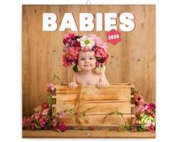 Nástěnný kalendář Babies - Věra Zlevorová 2020 - poznámkový - západoevropský