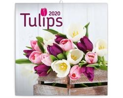 Nástěnný kalendář Tulipány 2020 - poznámkový - západoevropský