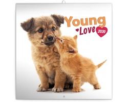 Nástěnný kalendář Young Love 2020 - poznámkový - západoevropský