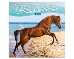 Nástěnný kalendář Koně a moře 2020 - poznámkový - západoevropský