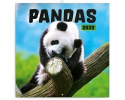 Nástěnný kalendář Pandy 2020 - poznámkový - západoevropský
