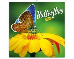Nástěnný kalendář Motýli 2020 - poznámkový - západoevropský