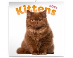 Nástěnný kalendář Koťata 2021 - poznámkový - východoevropský