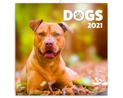 Nástěnný kalendář Psi 2021 - poznámkový - východoevropský