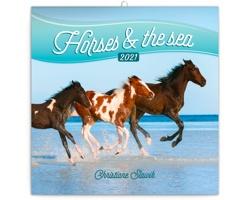 Nástěnný kalendář Koně a moře - Christiane Slawik 2021 - poznámkový - západoevropský