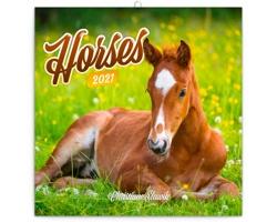 Nástěnný kalendář Koně - Christiane Slawik 2021 - poznámkový - východoevropský