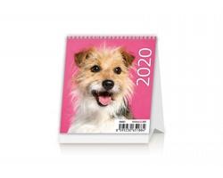 Stolní kalendář Puppies 2020 - Mini