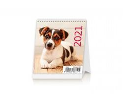 Stolní kalendář Puppies 2021 - Mini