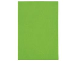 Poznámkový notes Lacerta čtverečkovaný, A5 - zelená