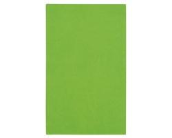 Poznámkový notes Lacerta čtverečkovaný, 9x15 - zelená