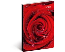 Kapesní týdenní diář Růže 2020 ultralehký, 11x17cm