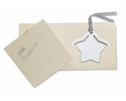 Kovová záložka ALTON ve tvaru hvězdy - ocelově stříbrná/šedá