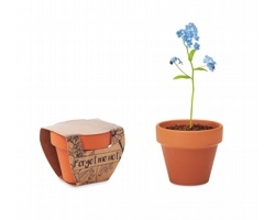 Terakotový květináč ROBLE se semínky pomněnky - dřevěná