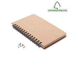 Linkovaný zápisník PINEBOOK se semínky borovice - béžová
