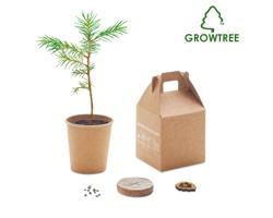 Sada pro vypěstování borovice PINETREE - béžová