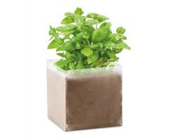 Set pro pěstování bylin OAST se semínky bazalky - béžová