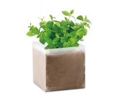 Set pro pěstování bylin CUBEB se semínky máty - béžová
