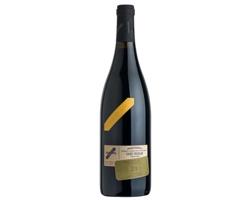Červené moravské víno Skoupil CUVÉE TRICOLOR suché, 750ML
